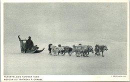 GROENLAND -- Retour Du Traineau à Chasse - Greenland