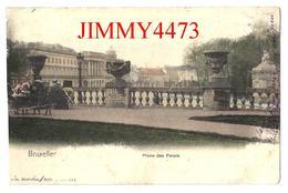 CPA Postkaart - Place Des Palais Bien Animée En 1906 - BRUXELLES - N° 374 - Edit. Nels - Scans Recto-Verso - Places, Squares