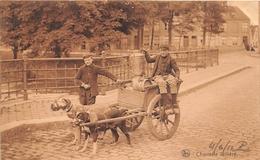 ¤¤   -   BELGIQUE   -  Charette Laitière   -  Attelage De Chien , Voiture à Chien  -  Laitiers     -   ¤¤ - Belgique