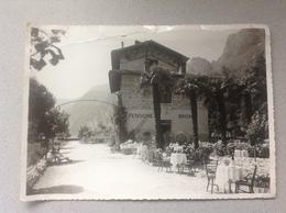 Riva Del Garda Albergo Brione Photo Originale - Cartes Postales