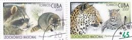 Cuba YV 4443/4 O 2007 Raton Laveur Panthère - Stamps