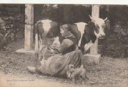 ***  ELEVAGE  ***   Jeune Fille à Traire Sa Vache - Chien Basset Teckel - TTBE - Allevamenti