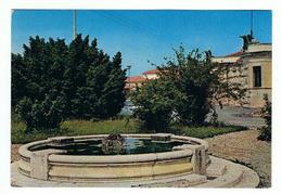 VOLPAGO  DEL  MONTELLO:  FONTANA  E  MONUMENTO  AI  CADUTI  -  FG - Treviso
