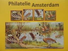 Br. Virgin Islands 2002, BIRD LIFE / FAUNA BIRDS OISEAUX VOGELS VÖGEL AVES: Mi 1065-68, + Bl 107, ** - Eenden