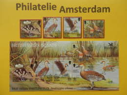 Br. Virgin Islands 2002, BIRD LIFE / FAUNA BIRDS OISEAUX VOGELS VÖGEL AVES: Mi 1065-68, + Bl 107, ** - Entenvögel