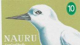 Nauru - White Tern - Nauru