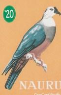Nauru - Mikronesian Pigeon - Nauru