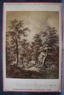 Photo. 25. Photo Sur Carton. Ruysdaël Allée D'arbres Dresde. Ancienne Maison Martinet Paris - Fotos