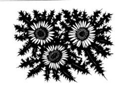 AK Scherenschnitt: - Blumen V. Hugo Kocher- Karte Nicht Gel - Scherenschnitt - Silhouette