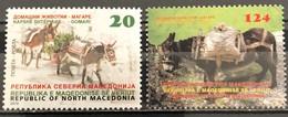 Macedonia, 2019, Domestic Animals - Donkey (MNH) - Macédoine