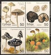 Serbia, 2019, Flora - Mushrooms (MNH) - Pilze