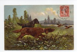 Chien: Setter, Chasse (19-632) - Chiens