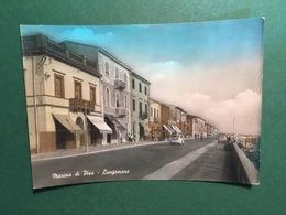 Cartolina Marina Di Pisa - Lungomare - 1965 Ca. - Pisa