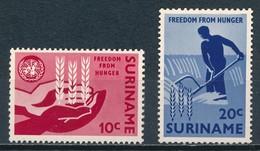 °°° SURINAME - Y&T N°381/82 - 1963 MNH °°° - Suriname