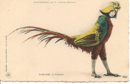 CHANTECLER  Simone La Faisane, Rostand, Artiste, Oiseau - Théâtre