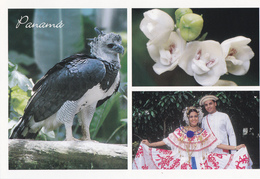 PANAMA'S NATIONAL BIRD,FLOWER & TYPICAL DRESS - Panama