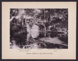 Fotografie Junghanss & Koritzer, Meiningen, Ansicht Meiningen, Englischer Garten, Brücke über Einen Teich - Orte