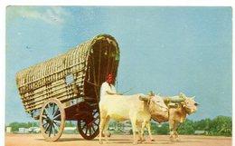 Bullock Cart Colombo Ceylon Ceylan - Sri Lanka (Ceylon)