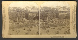 China, In The Emperor's Garden In Peking - Stereoscoop