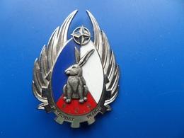 I.F.O.R, E.C.S. PLOCE, 3° Mandat   , Insigne Train   , Insigne , Boussemart - Armée De Terre