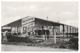 Ca 1965 MAASTRICHT BEATRIXHAVEN Rozenkrans Fabriek ROMIAK In Aanbouw Gebedssnoer Anime - Uitg. MUVA 124 Echte Foto - Maastricht