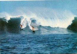 SURF - Wasserski