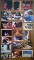 Lot De 21 Cartes Postales CHATS - Chats