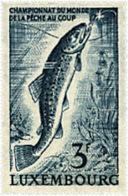 Ref. 97319 * NEW *  - LUXEMBOURG . 1963. WORLD FISHING CHAMPIONSHIP. CAMPEONATO DEL MUNDO DE PESCA - Luxemburgo
