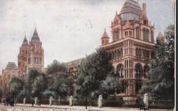 AN11 Natural History Museum, South Kensington, London - London