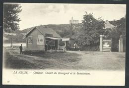 +++ CPA - La Meuse - GODINNE - Chalet Du Rossignol Et Le Sanatorium   // - Yvoir
