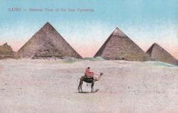AQ24 Cairo, General View Of The Four Pyramids - Pyramids