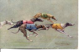 Belle Illustrée Signée Persis Kirmsz. LEVRIERS GREYHOUNDS EN COURSE 2 - Chiens