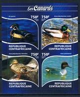 Bloc Sheet Oiseaux Canards Birds Ducks  Neuf MNH ** Central Africa Republique Centrafricaine 2015 - Canards