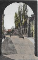 AK 0209  Graz - Ausblick Vom Paulustor / Verlag Strohschneider Um 1920 - Graz