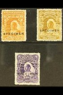 "1897 6d Yellow Brown, 2s 6d Olive Bistre And 10s Violet Overprinted ""Specimen"", SG 71s, 73s, 74s, Very Fine Mint. (3 Sta - Niger (1921-1944)"