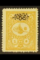 1901 5pi Yellow-buff Foreign Mail With Printed Matter Overprint (Michel 113 A, SG N194), Fresh Mint, Some Shortish Perfs - Unclassified