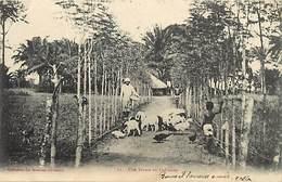 Pays Div-ref R771- Dahomey -collection Des Missions Africaines - Misson -religion -christianisme - Une Ferme - - Dahomey