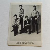 THE SUNLIGHTS - Chanteurs & Musiciens