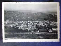 VENETO -VICENZA -ARZIGNANO -F.G. - Vicenza