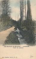 CPA - Belgique - Linkebeek - Vallée Des Artistes - Linkebeek