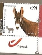 Portugal ** & Autochthonous Breeds Of Portugal,  Mirandês Donkey 2019 (5777) - Fattoria