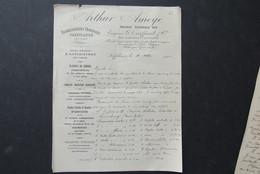 Factuur Invoice Arthur Ameye Gent Zaffelare 1901 Horticole Horticulteur - 1900 – 1949