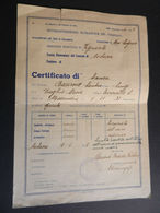 19916) PAGELLA SCOLASTICA ALESSANDRIA NOVI LIGURE VIGUZZOLO AVOLANA 1945 5^ ELEMENTARE CURIOSA POSTILLA LOCALITA' ESENTA - Diplomi E Pagelle