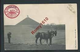 WATERLOO . Chevaux De Labour Et Paysan. Belle Carte. Voyagée En 1908.  2 Scans - Waterloo