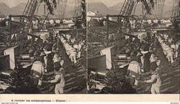 A Rentrer Les Embarcations- Hissez!  ... - Guerre