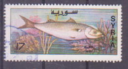 69-897 / SYRIA - 1996   FISH   Used O - Syrie
