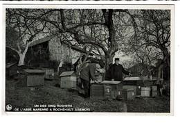 Un Des 5 Ruchers De L'Abbé Marenne à Rochehaut S/Semois - 400 Colonies Sur La Semois, La Liresse, Les Plaines. - 2 Scans - Bouillon