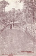 British Guiana, Barima-Barama Road (1910s) Postcard - Postkaarten