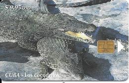 CARTE PUCE-CUBA-ETECSA--9,95USD-CROCODILES-R°Glacé-UTILISE-TBE-RARE - Coccodrilli E Alligatori