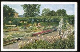 Krefeld Botanischer Garten Im Grüngürtel 1944 Girardet - Krefeld